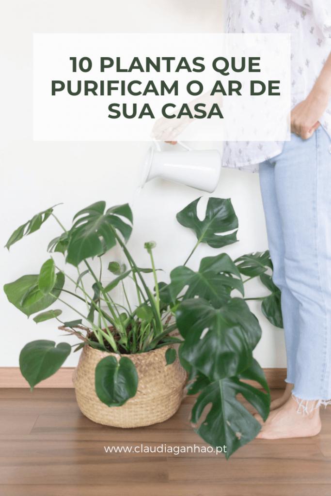 plantas purificantes